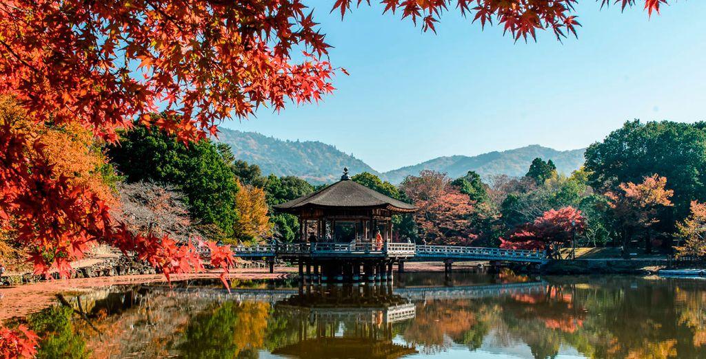 El Parque Nara, un bello entorno natural dentro de la ciudad