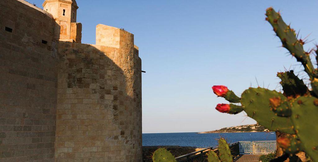 Descubra Sicilia y sus encantos