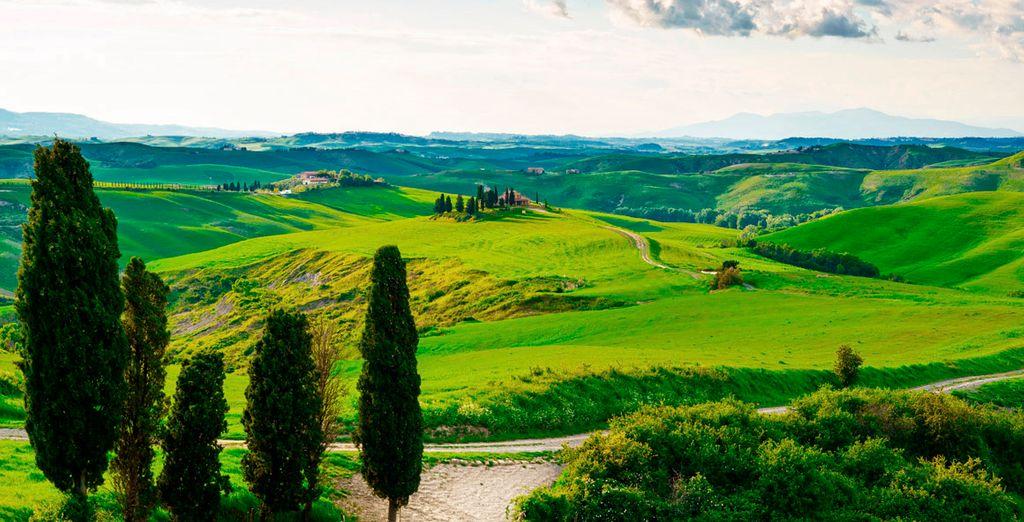 Venga a conocer la Toscana, una región icónica por su legado histórico, no la deje escapar