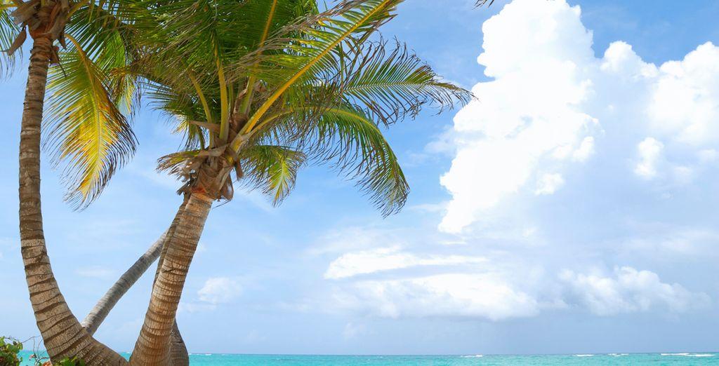 O relajarse en la playa sin preocupaciones