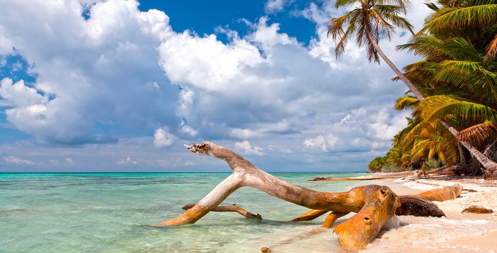 Las playas de arena blanca te esperan...