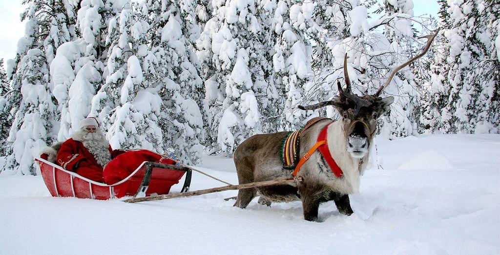 Logra obtener la licencia oficial para trineo con renos después de un rápido y sencillo paseo