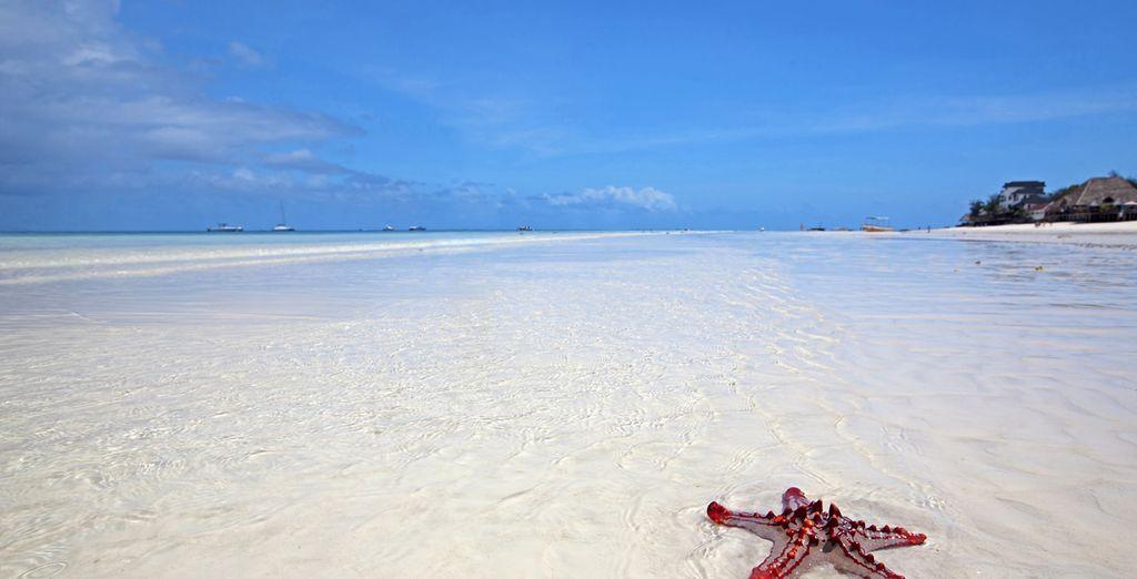 Una arena blanca te acariciará los pies...