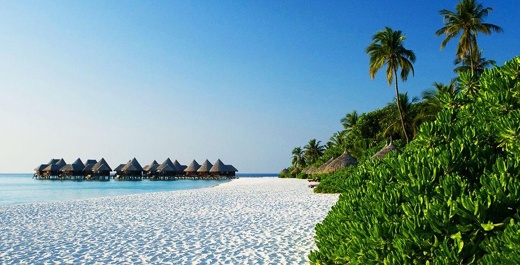 Las Maldivas como siempre soñaste