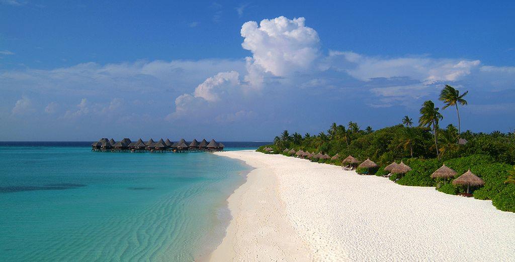 Pasea por sus largas playas de arena blanca
