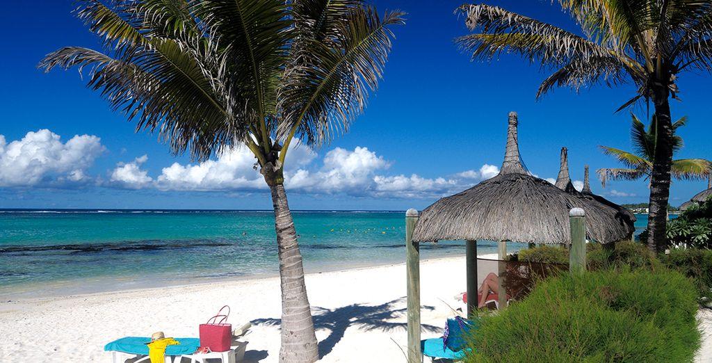 ... o bajo el sol en la playa privada
