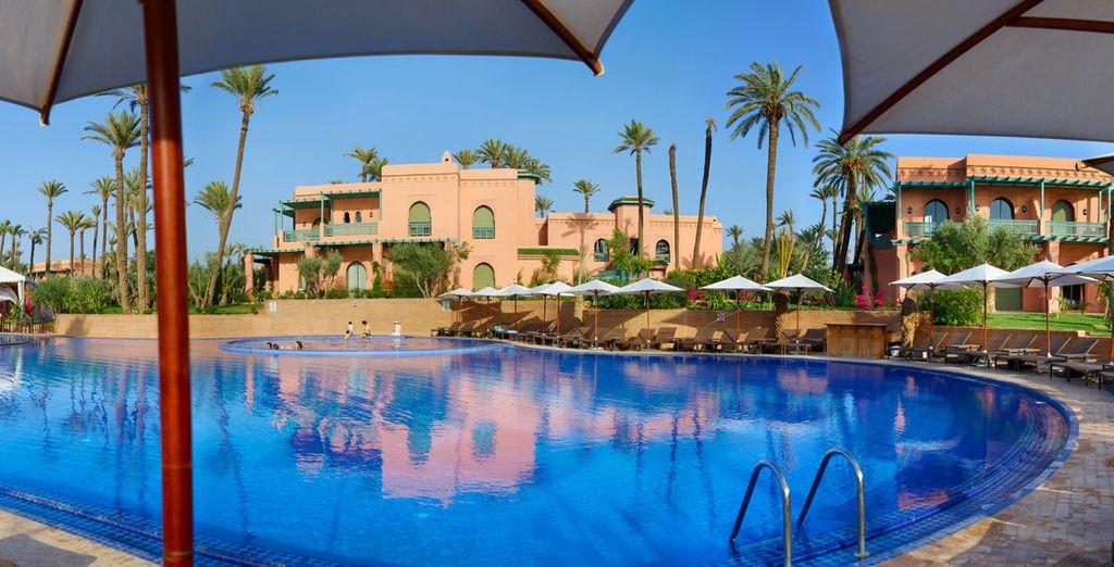 Disfruta un buen baño y del sol desde la piscina...