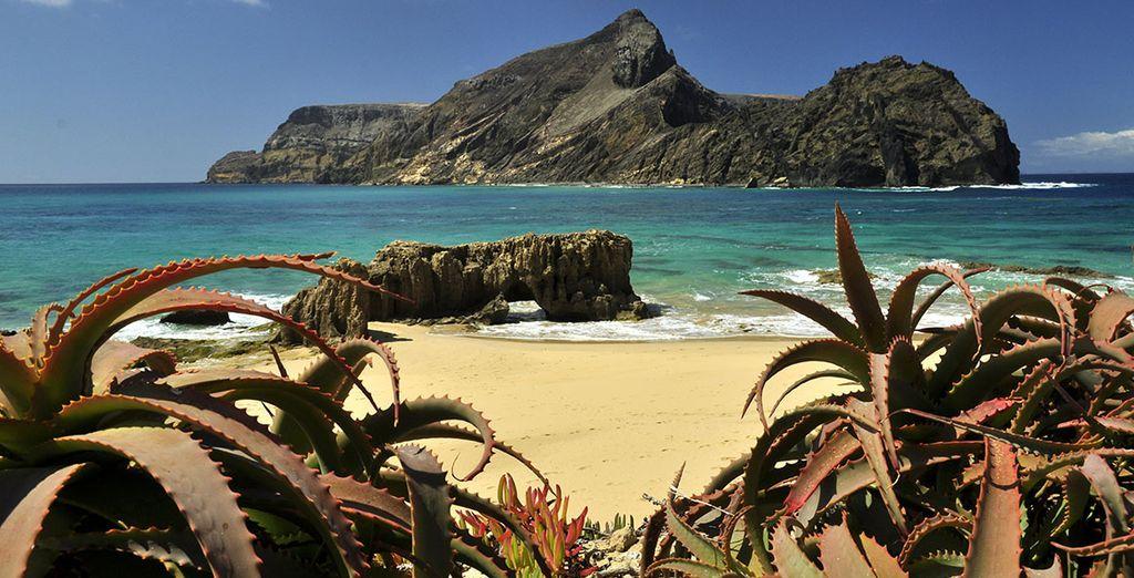 Disfruta del excelente clima y playas de Madeira