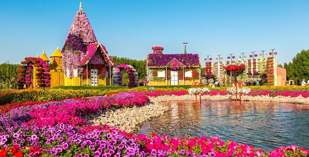... o Miracle Garden
