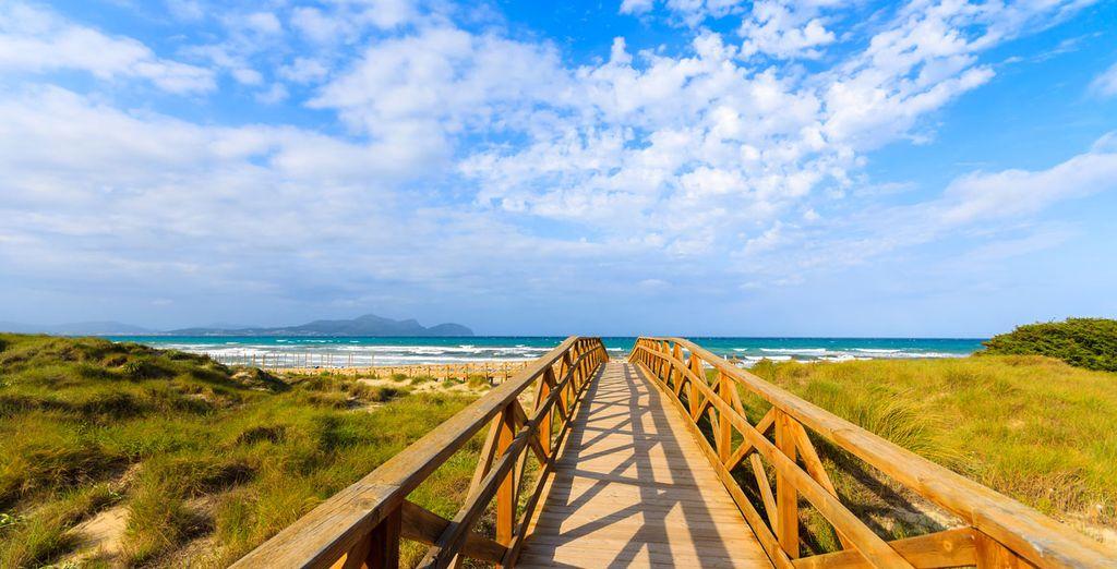Tus vacaciones en Mallorca empiezan aquí