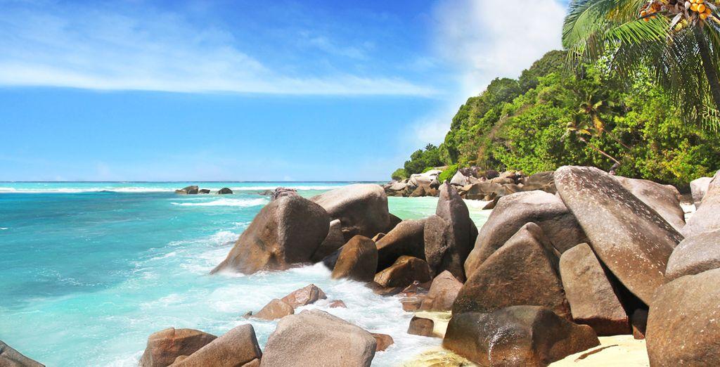 ... en idílicas playas de arena blanca...
