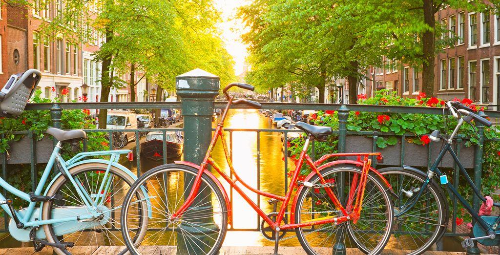 Descubre la ciudad en bicicleta