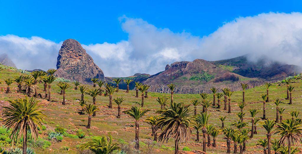 La Palma te está esperando