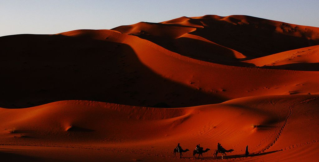 El desierto a las puertas