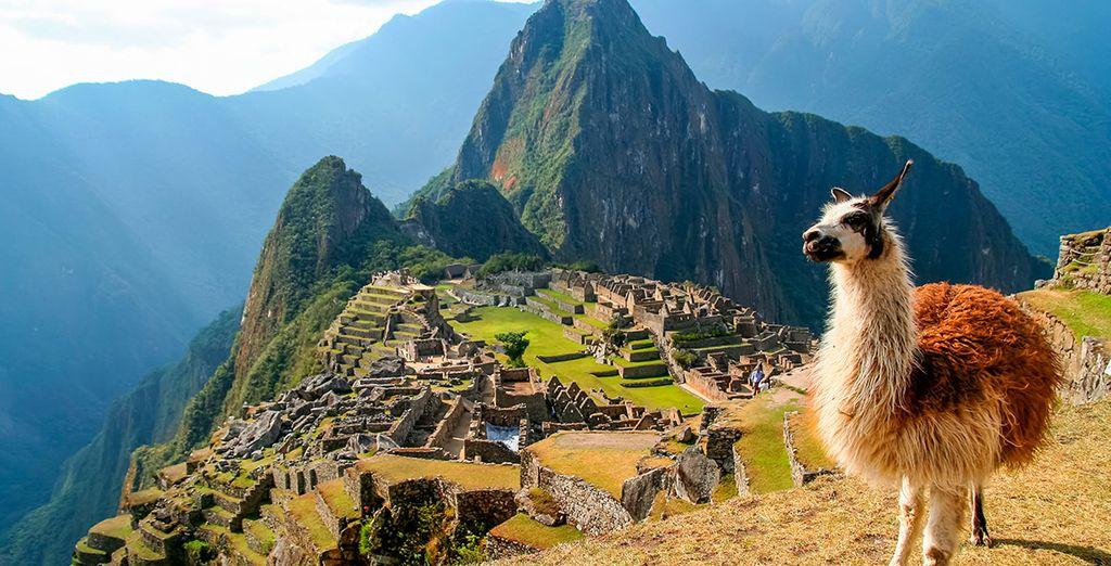 El sexto día te espera el Machu Picchu
