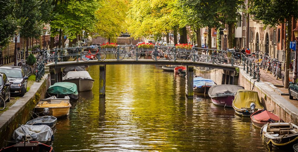 Ámsterdam te está esperando. ¿Vienes ya?