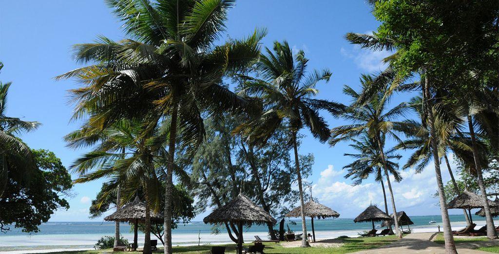 Disfruta de tu estancia en Diani alojándote en Africa Pearl & Spa 4*