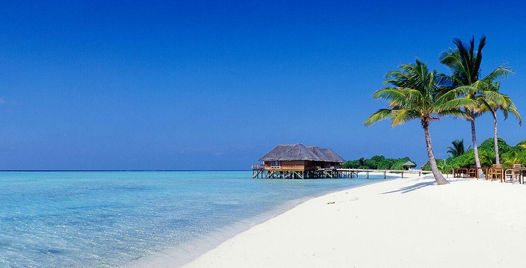 Infinitas playas de arena blanca te esperan