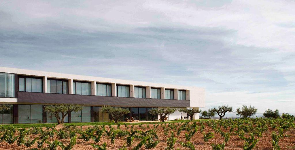 Finca de los Arandinos 4* - La Rioja