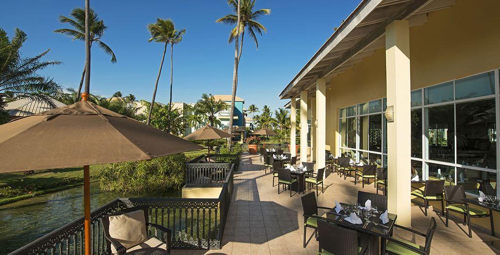 Y aprovecha el clima ideal para comer o cenar en la terraza