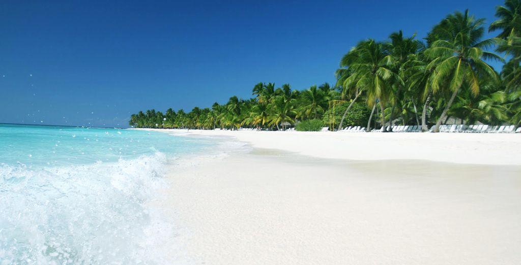 Las playas de Jamaica te fascinarán