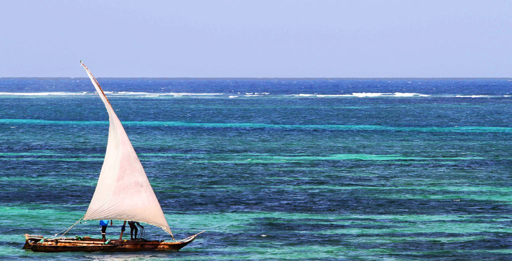 Déjate cautivar por la inmensidad del océano
