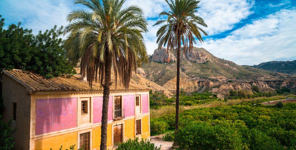 Murcia, ¡qué hermosa es!