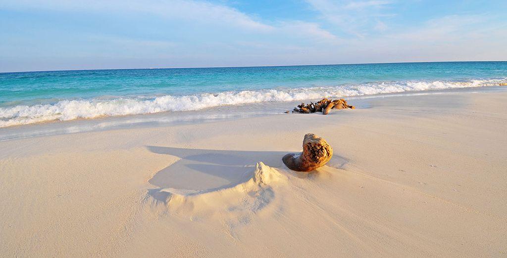 Extensas playas de ensueño y aguas cristalinas