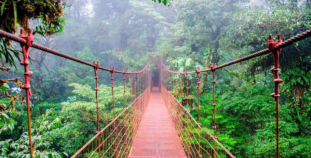 ¿Te atreves a pasar por los puentes suspendidos? ¡Vive esta aventura única!