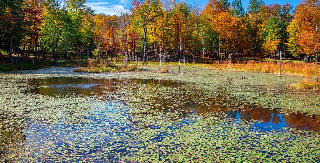 Emociónate con la belleza del Parque Natural de Omega