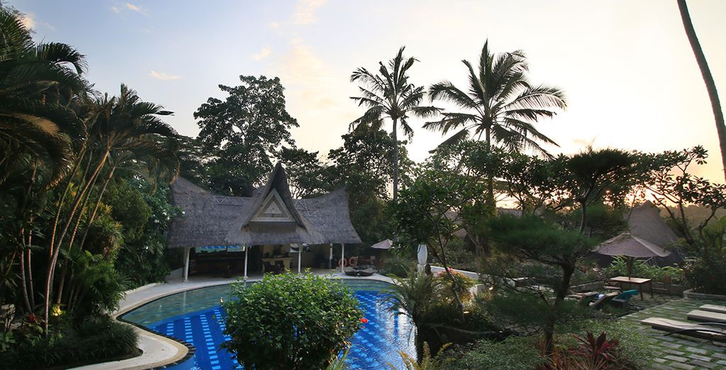 En Hotel Jungle Retreat Ubud 5* han cuidado cada detalle para que sólo pienses en descansar