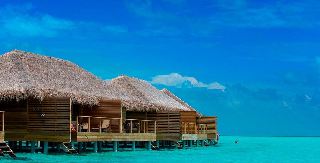 Actividades en Maldivas