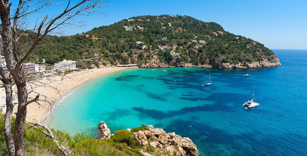 Disfrute en pareja o con amigos de la maravillosa Ibiza