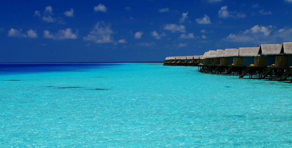 Relájate y disfruta. ¡Maldivas te espera!