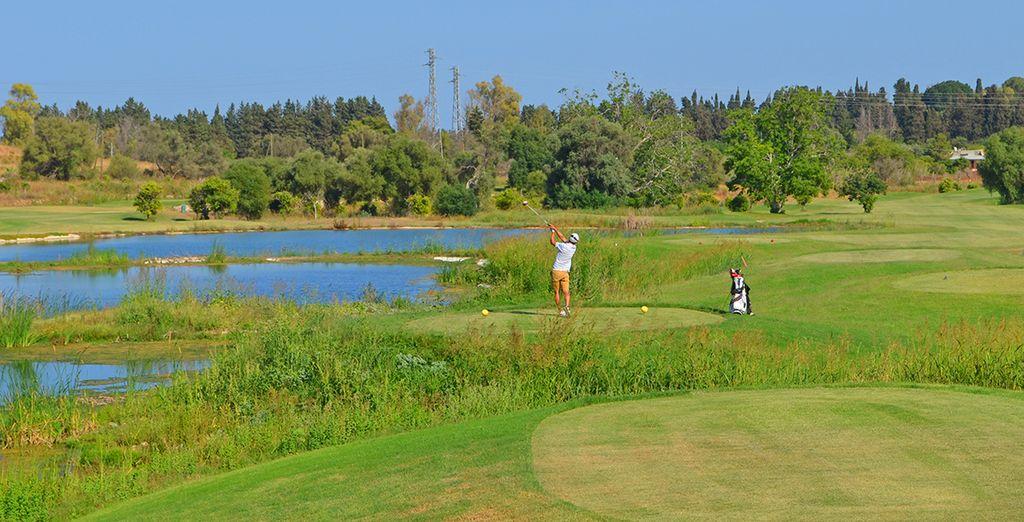 ¿Te animas a jugar a golf?