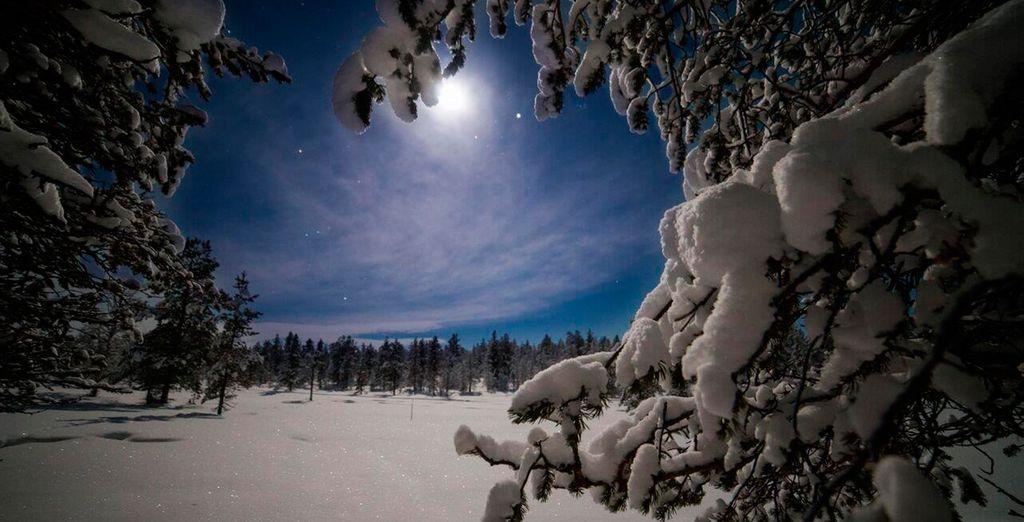 Admire la luna llena como nunca antes la había visto