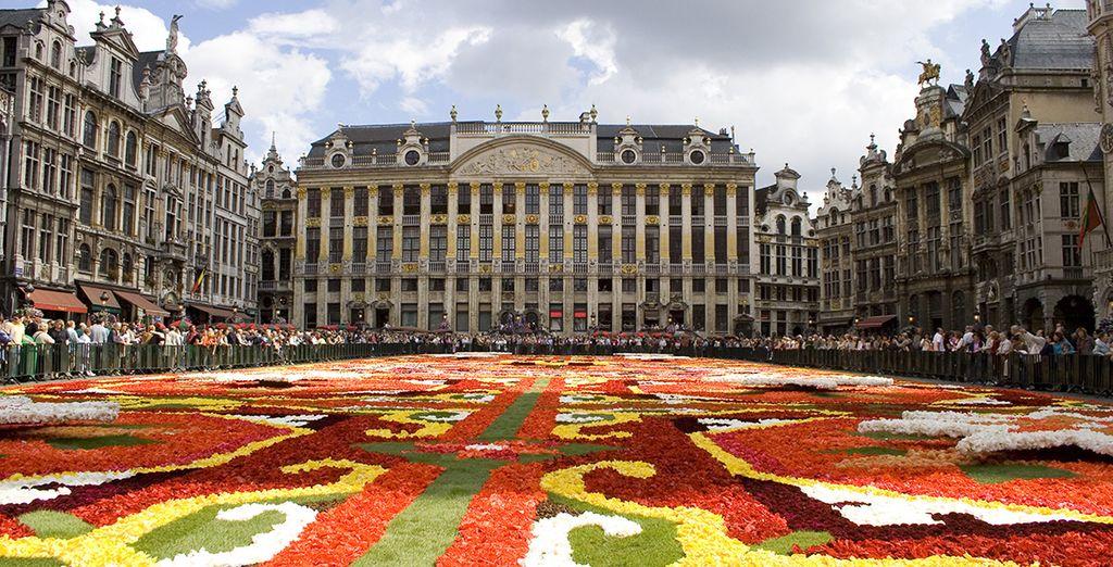 En agosto podrá ser testigo de la famosa Flower Carpet de Bruselas