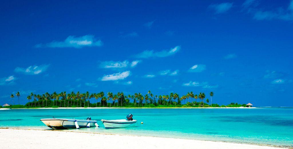 Las vacaciones ocn las que tanto ha soñado hechas realidad