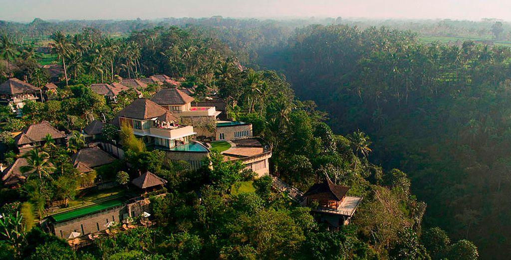 Te alojarás en el Kamandalu Ubud 5*, situado en un entorno envidiable...