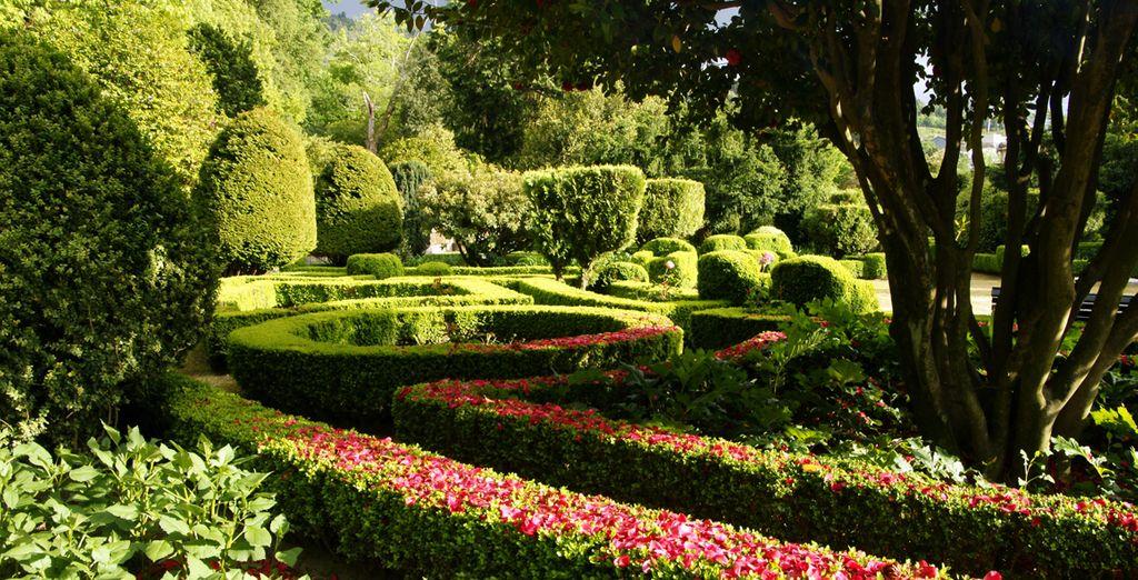 Déjese seducir por los olores y colores de sus exuberantes jardines
