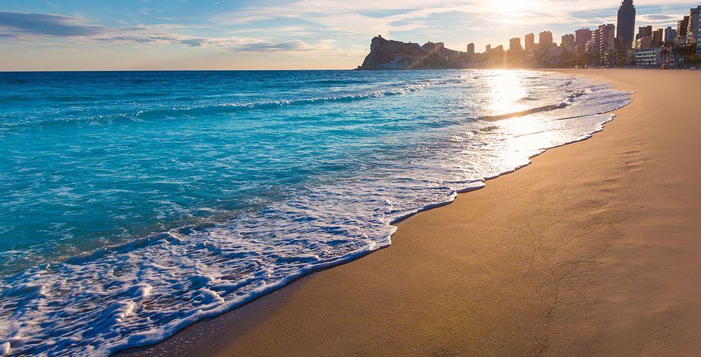 Disfrute al máximo de sus playas