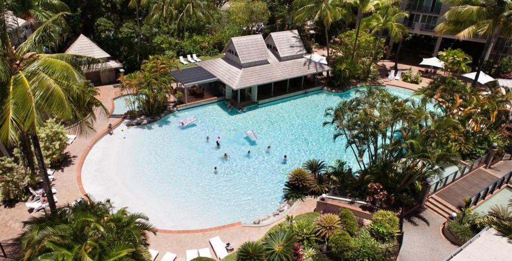 Podrá disfrutar de la piscina del hotel