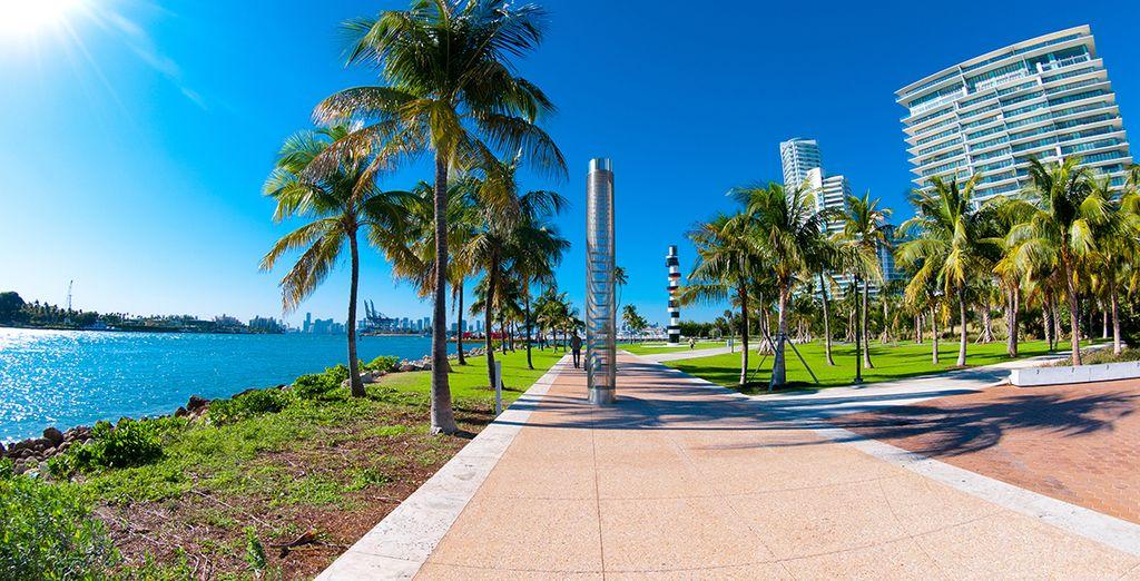 Escape de la rutina y visite Miami
