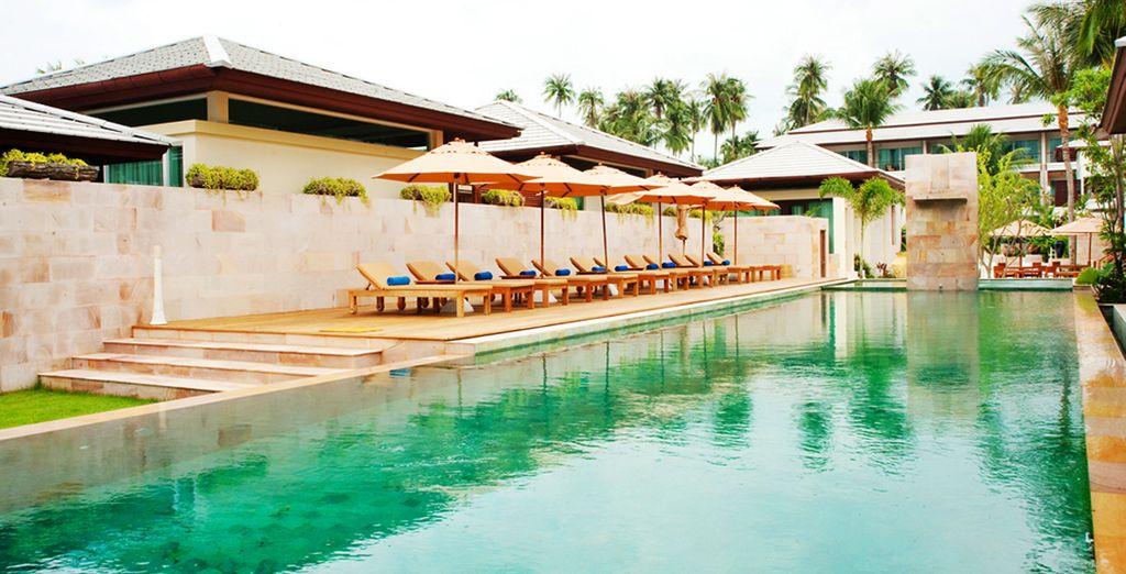 Disfrute de las hamacas y la piscina, Elements Boutique