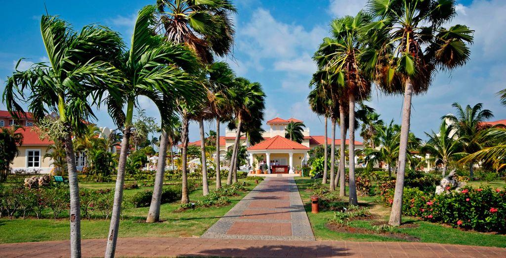 Rodeado de vegetación y jardines tropicales