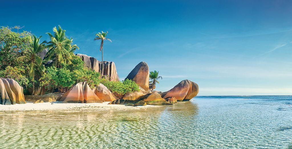 Qui vous fera découvrir les plus belles îles de l'archipel