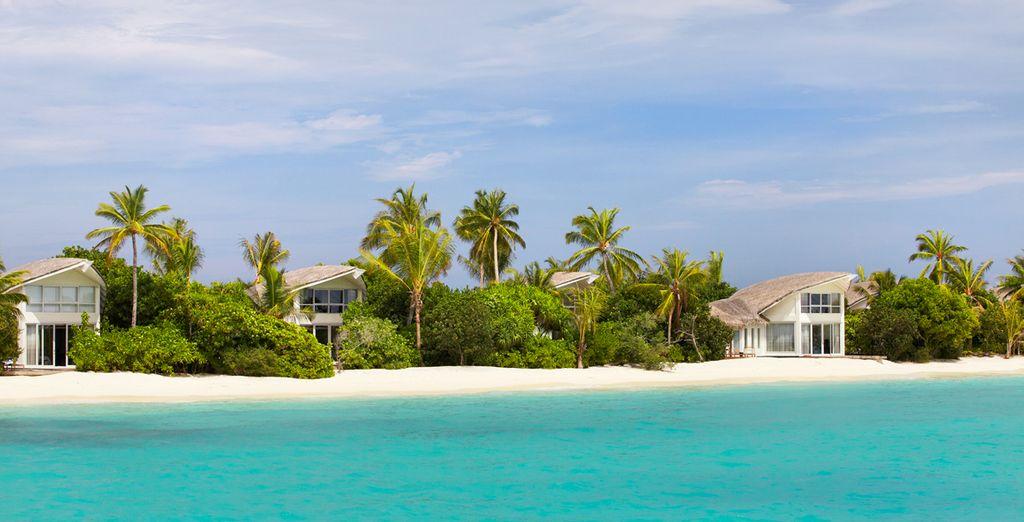 Dans votre villa sur la plage...