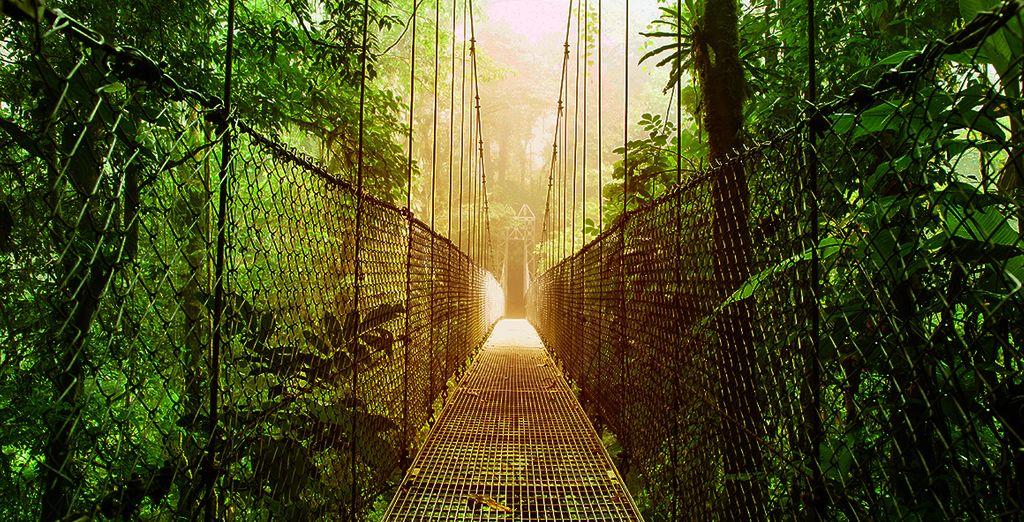 """Autotour """"Découverte du Costa Rica"""