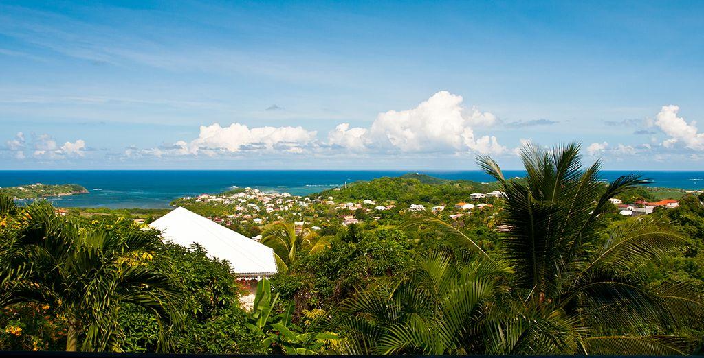 La vue depuis votre terrasse vous laissera... rêveur ! Bon séjour en Martinique !