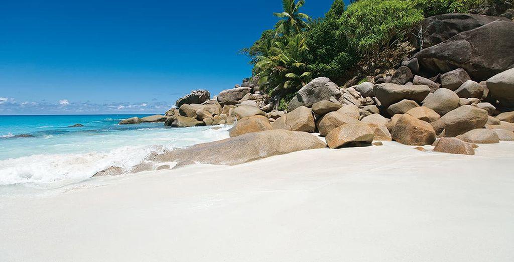 Envolez-vous vers les îles paradisiaques des Seychelles